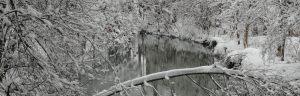 16_07_strogen_winter