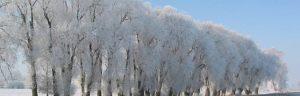 16_07_winterlandschaft_harham