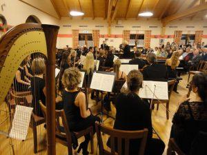 14_11_herbstkonzert_gemeindeorchester_4_1000